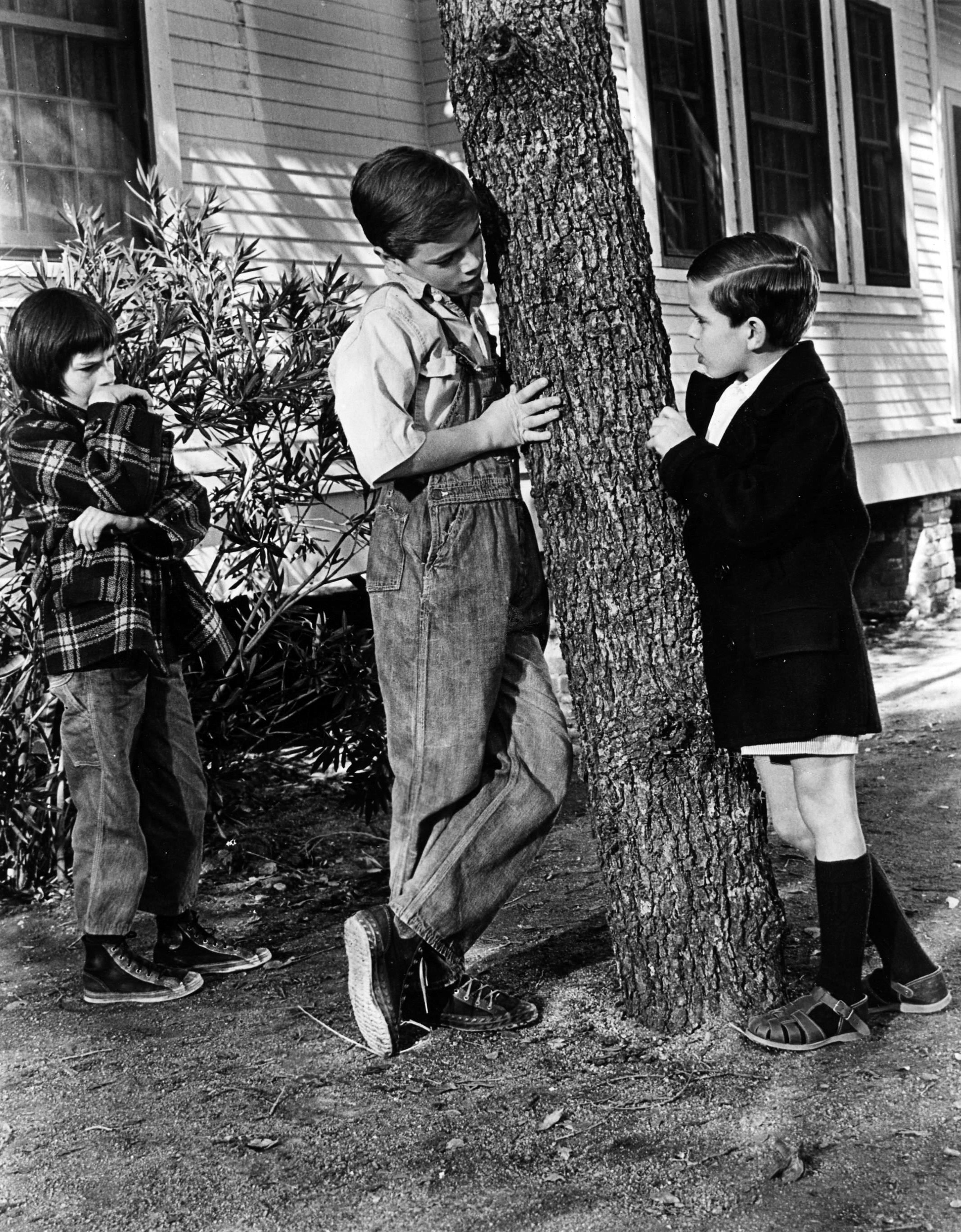 To kill a mockingbird relationship between atticus and scout essay