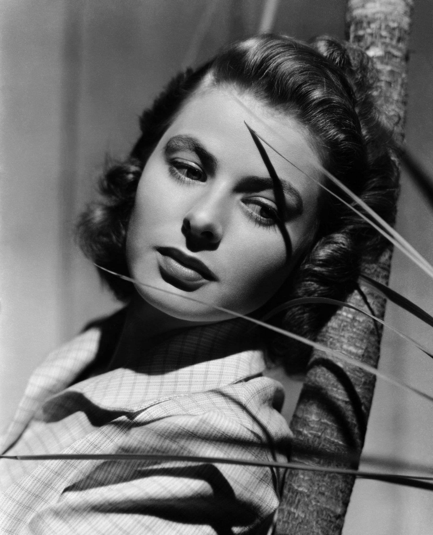 Ingrid Bergman Nude Celebrities Forum Famousboard Com