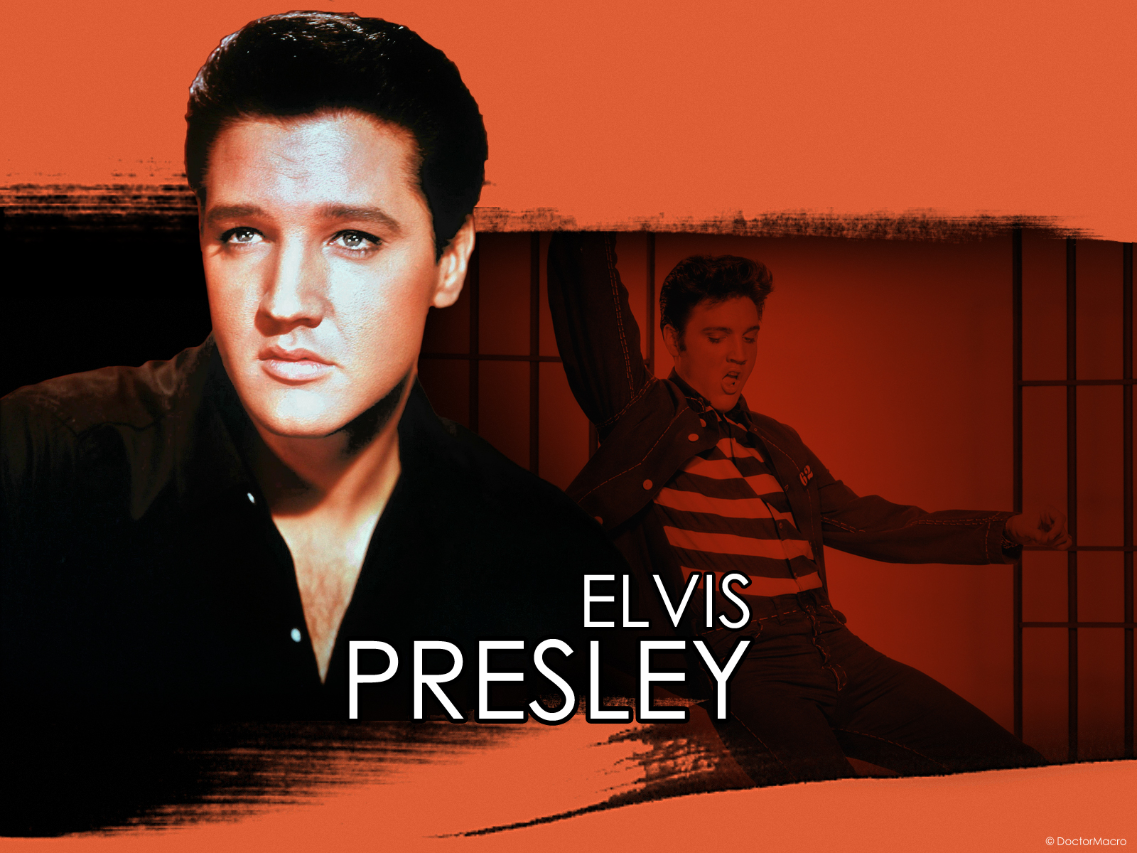 elvis presley wallpapers 01 - photo #24