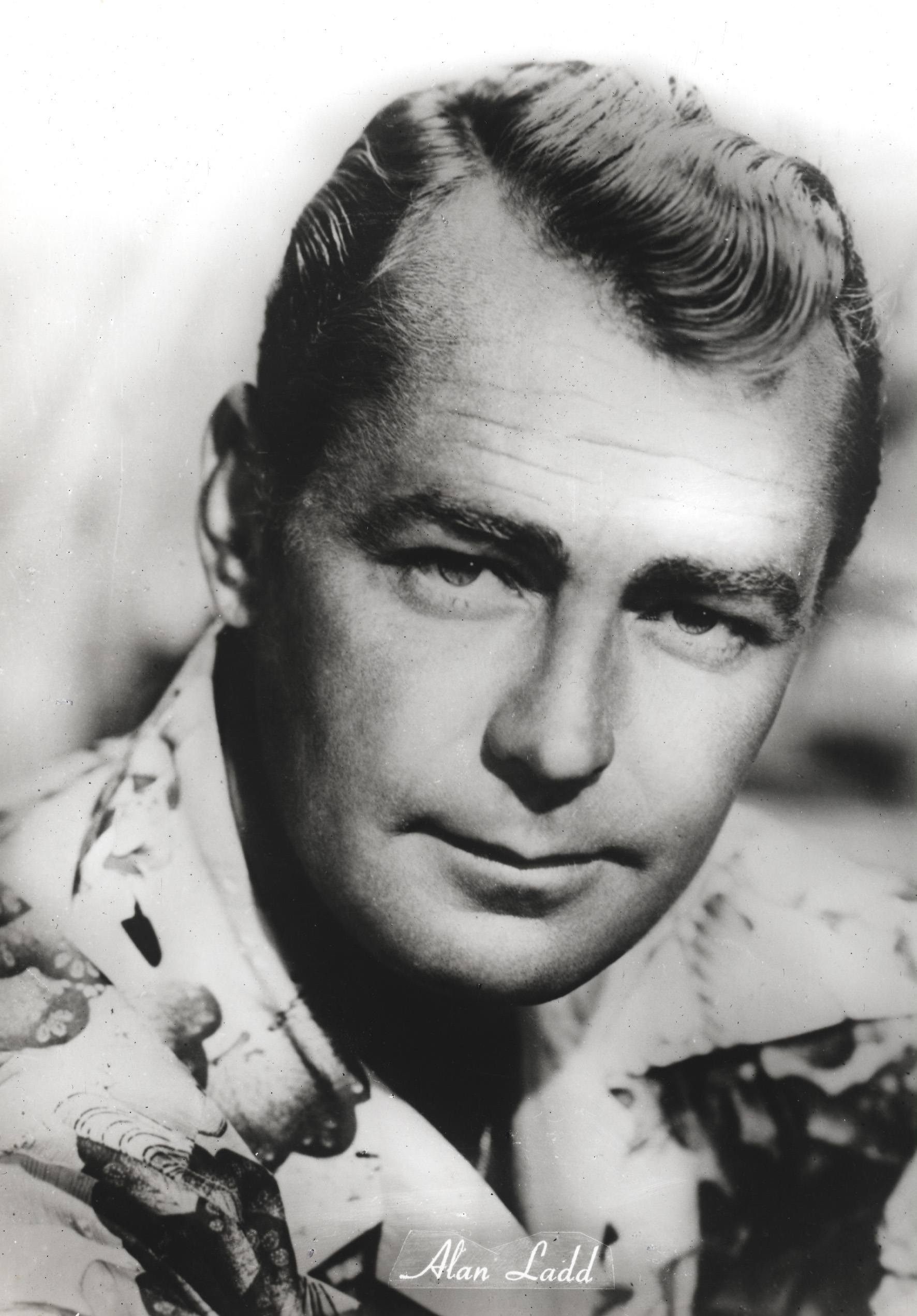 alan ladd gay