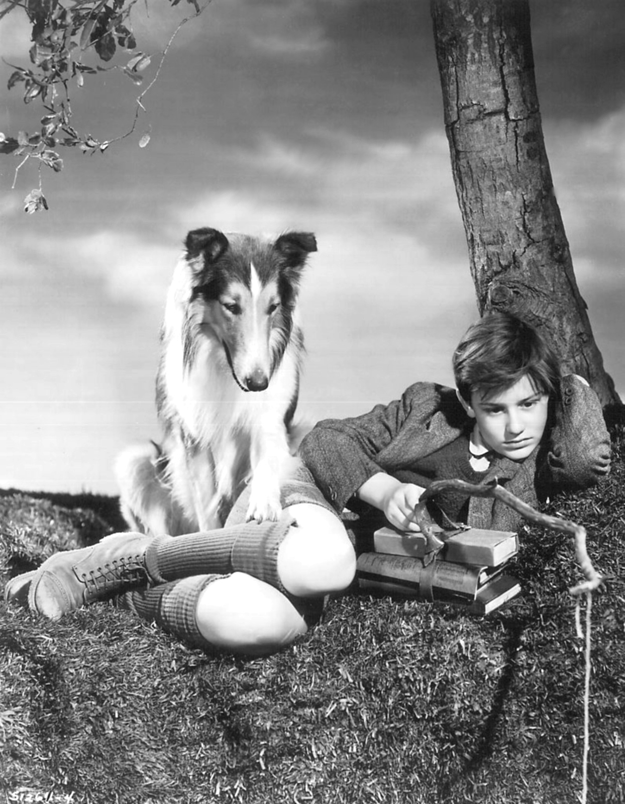 Roddy Mcdowall And Elizabeth Taylor Lassie Come Home