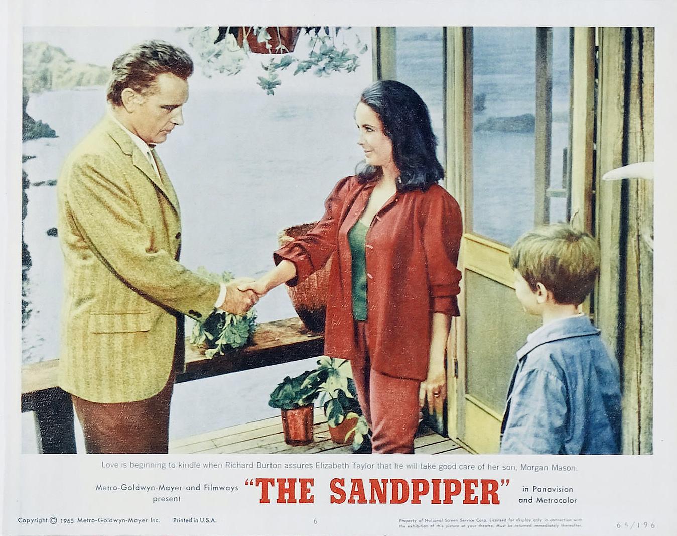 Sandpiper The