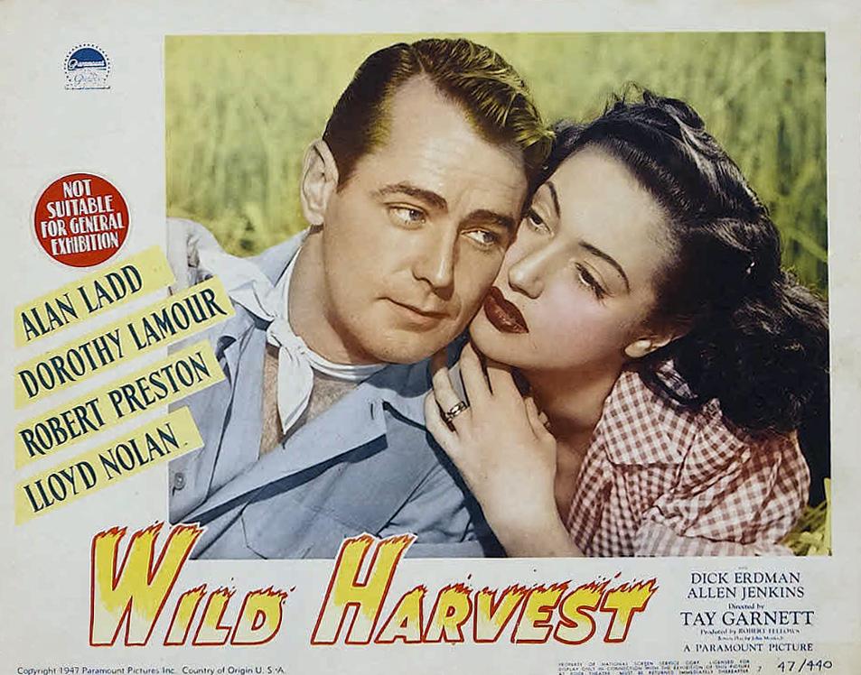 Wild Harvest (1947)